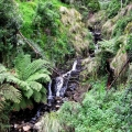 a-small-waterfall-on-the-precipitous-west-face-of-mt-tassie