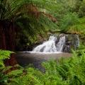 billys-creek-falls-darryl-whitaker-djwtv