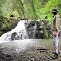 billys-creek-falls