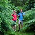 diaper-track-tree-ferns-darryl-whitaker-djwtv