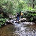 macks-creek-crossing