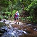 macks-creek-is-a-fast-flowing-mountain-stream-arising-in-tarra-bulga-np-darryl-whitaker-djwtv