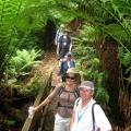 walkers-on-duff-trail